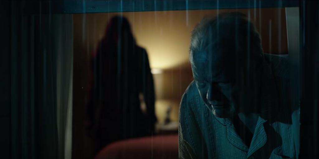 ดูหนัง MALIGNANT – ชั่วโคตรร้าย